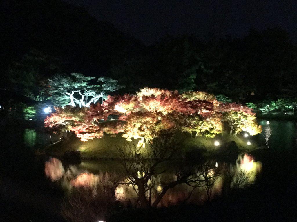 栗林公園ライトアップ1